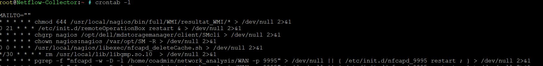 netflow crontab debug