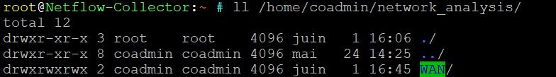 netflow directory debug
